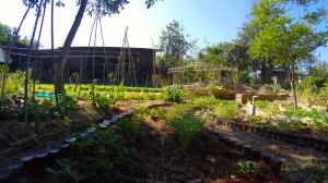 Panya Project Garden